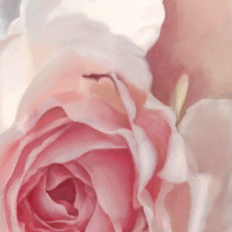 Incandescent Rose